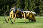 Džinovski insekti na Adi