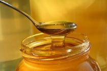 Osnovan klaster Panonska pčela