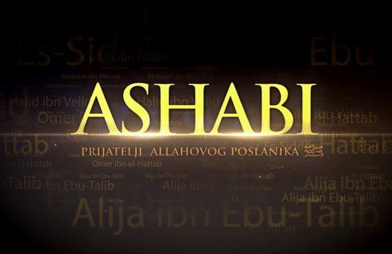 Fetva-i emin Islamske zajednice o šijskom napadanju i vrijeđanju ashaba, posebno Majke pravovjernih, Aiše, r.a.