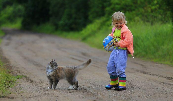 Koja životinja je idealan kućni ljubimac za dete?