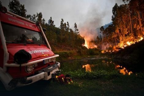 Portugal: Požar kao ratna zona, delo veštica