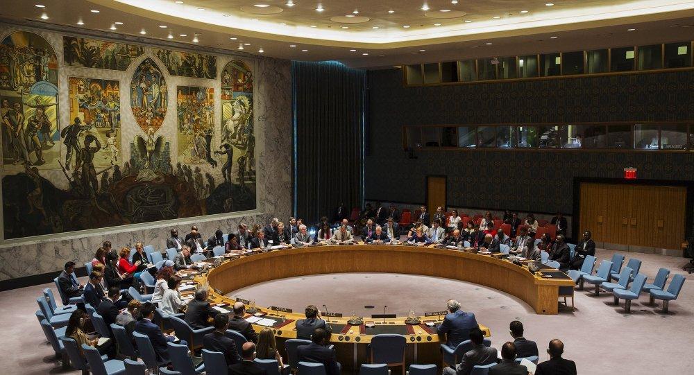 UN: Informacije o obaranju sirijskog aviona izazivaju duboku zabrinutost