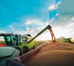 Banca Intesa počela da prima zahteve za subvencionisanekredite za poljoprivredu: Povoljni krediti uz pogodnosti za mlade i žene u agro biznisu