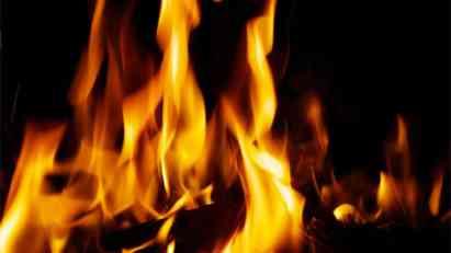 Bingo i milioni nestali u plamenu