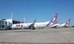 Čak 700.000 Srba čarter-letovima ide na odmor