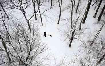 Horor u snegu kod Babušnice