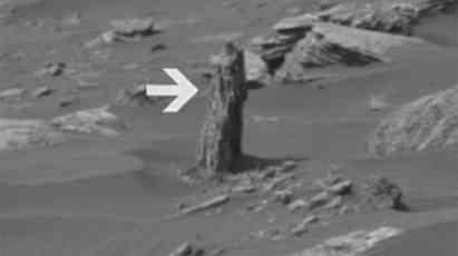 NASA POTVRDILA: Pronađeno drvo na Marsu! (VIDEO)