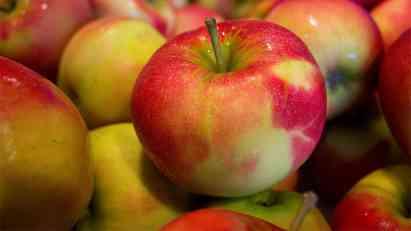 Osumnjičen da je voće iz EU prodavao Rusiji kao srpsko