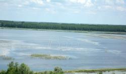 Otpadne vode Beograda bez tretmana odlaze u Dunav i Savu