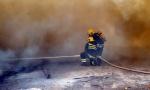 POŽAR NA OBRONCIMA FRUŠKE GORE: Borba sa vatrenom stihijom