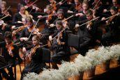 Regionalna dečja filharmonija na Stadionu Tašmajdan 26. avgusta  u okviru Noći muzike