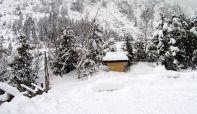 Sneg odneo živote u Poljskoj