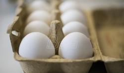 U Danskoj ponovo pronadjena jaja zagadjena insekticidom