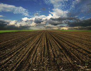 Zapelo oko 70.000 hektara zemlje