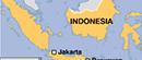 U zemljotresu u Indoneziji poginulo najmanje 46 ljudi