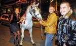 Danijela Vranić dobila konja za rođendan