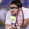 Tipsarević izgubio od Federera