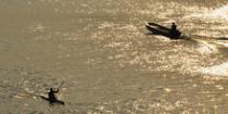 Ispuštene zagađujuće materije u Dunav