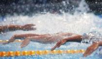 Plivači se u Zrenjaninu spremaju za nove evropske medalje