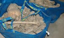 Šveđanka pronašla dve kese pune ljudskih kostiju