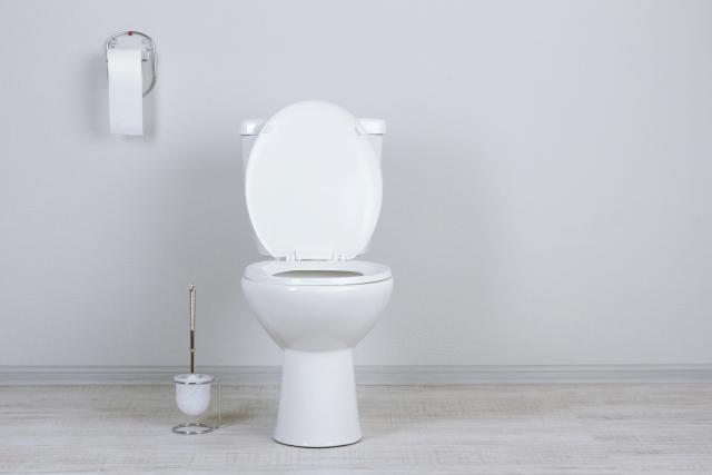 Ako u javnom WC-u sednete na dasku šolje mokru od urina...