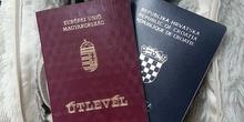 Interpol traga za 55 miliona pasoša