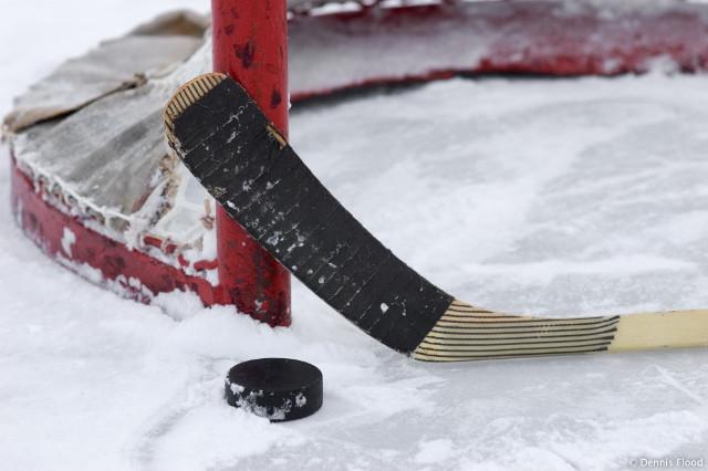 Kažnjeni vinovnici tuče u hokejaškom večitom derbiju
