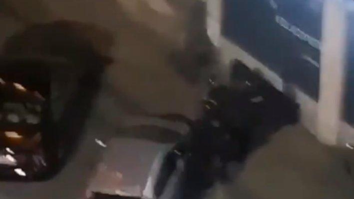 Погледајте како више полицајаца батина и онесвешћује жену (видео)