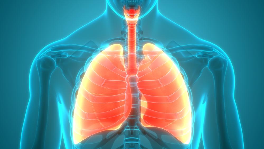 13 najjeftinijih saveta za zdrava pluća koje svako može da primeni