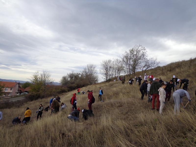 50 učenika zasadilo stotine javora u Bobovištu
