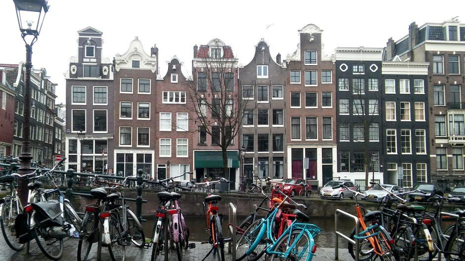 A u Amsterdamu: Manje parking mesta, više drveća