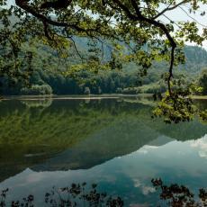 ALARMANTNO, posetioci u ŠOKU: Jezivi prizori na Biogradskom jezeru! (FOTO)