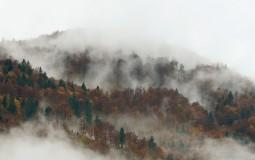 AMSS: Smanjena vidljivost na putevima pored reka i kanala zbog magle i sumaglice
