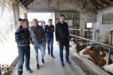 Ako igde ima smisla ulagati u stočarstvo, onda je to na prostoru Kragujevca
