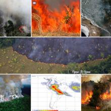 Amazonija u plamenu