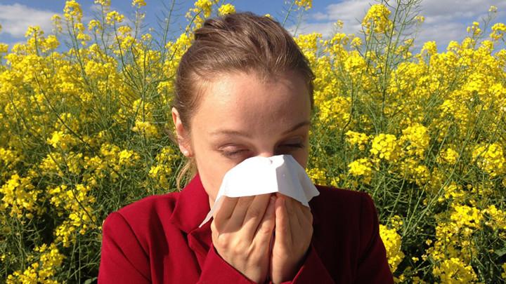 Ambrozija uzrokuje ozbiljne zdravstvene probleme, 8 saveta kako da se zaštite!