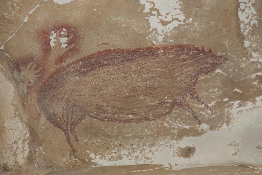 Arheolozi: Najstariji crtež životinje nastao pre 45.500 god