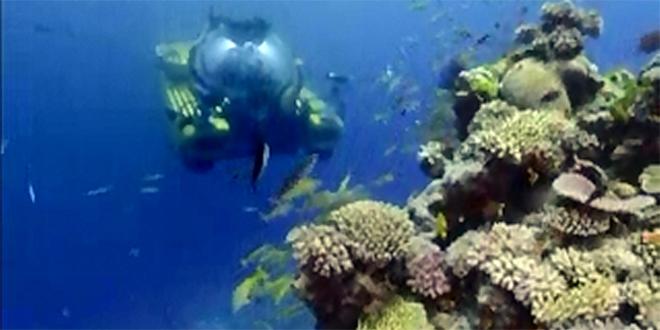 Australijski Veliki koralni greben ponovo beo