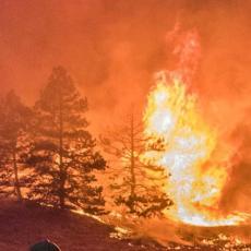 BESNI POŽAR U POŽAREVCU: Zahvaćena velika površina, plamen gori i u drugim delovima opštine!