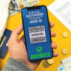 BEZ OVOG DOKUMENTA NEMA LETOVANJA: Ovo je detaljno uputstvo kako izvaditi Digitalni zeleni sertifikat (FOTO)
