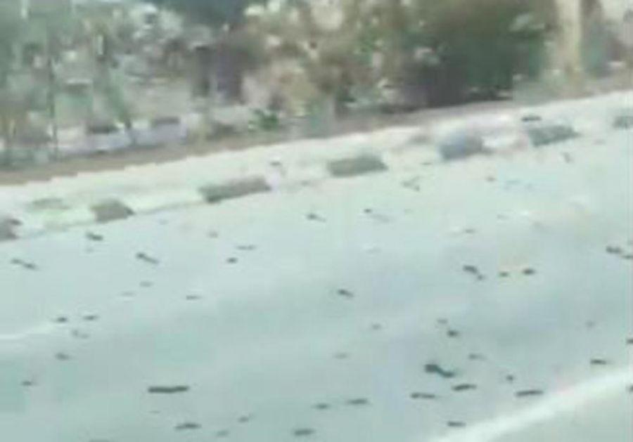 BIBLIJSKOJ POŠASTI NIKAD KRAJA: Užasavajući snimak iz Bahreina zapanjio svet (VIDEO)