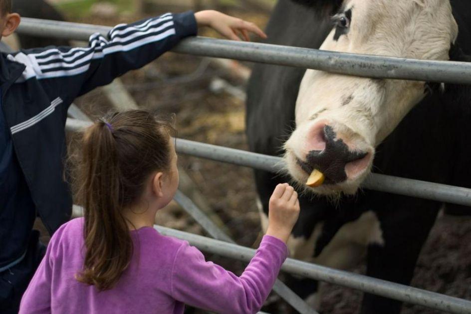 BIZARAN BRITANSKI RIJALITI ŠOU: Postanite vegetarijanci ili ćemo vam ubiti ljubimca i naterati vas da ga pojedete! (FOTO)