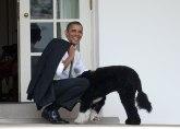 Baraku Obami uginuo pas