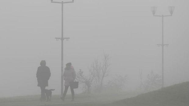 Beograd protiv zagađenja: Ekološka vozila i sadnja milion stabala