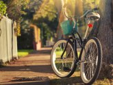 Beograđani, od sutra kreću prijave: Subvencije za kupovinu bicikala - svakom po 5.000 dinara