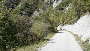 Biciklima kroz kanjon Đetinje