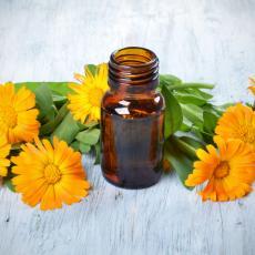 Biljka koja ČINI ČUDA: Njen CVET se koristi kao MELEM ZA LEČENJE svih KOŽNIH BOLESTI (RECEPT)