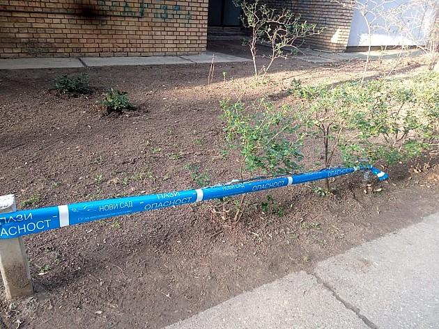 Bodljikava žica protiv pasa na Limanu danas će biti uklonjena