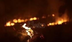 Bolsonaro razljutio svet zbog požara u Amazoniji (VIDEO)