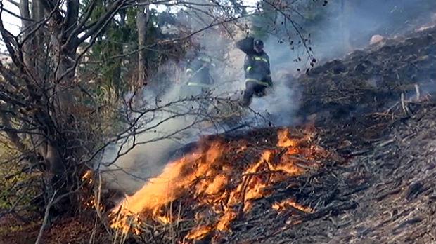 Borba s požarima na jugoistoku Srbije, neristupačan teren otežava gašenje